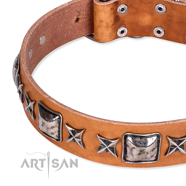 Everyday use decorated dog collar of quality full grain genuine leather