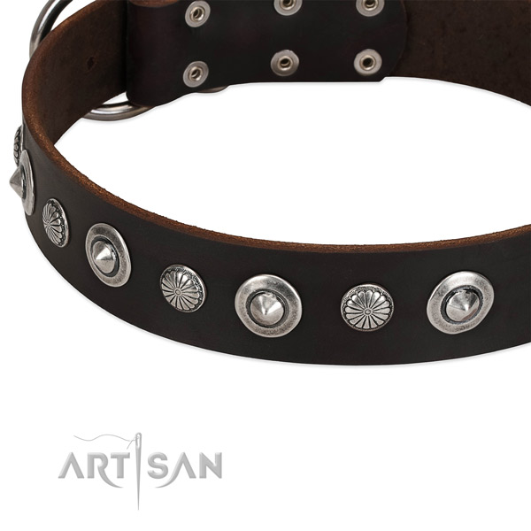 Unusual embellished dog collar of top notch full grain natural leather