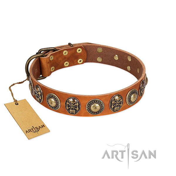 Easy to adjust full grain leather dog collar for stylish walking your canine