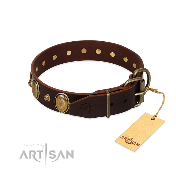 Corrosion proof fittings on full grain natural leather collar for everyday walking your dog