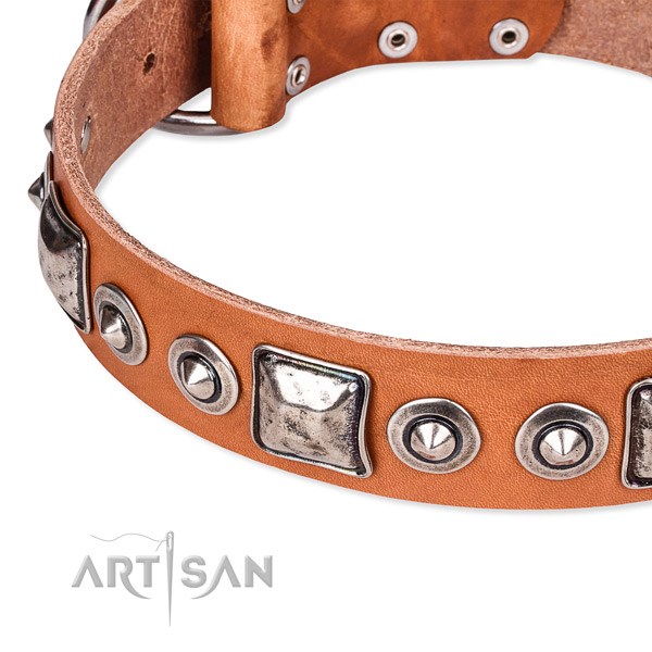 Top notch natural genuine leather dog collar handcrafted for your handsome four-legged friend