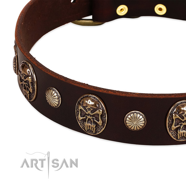 Leather dog collar with decorations for everyday use