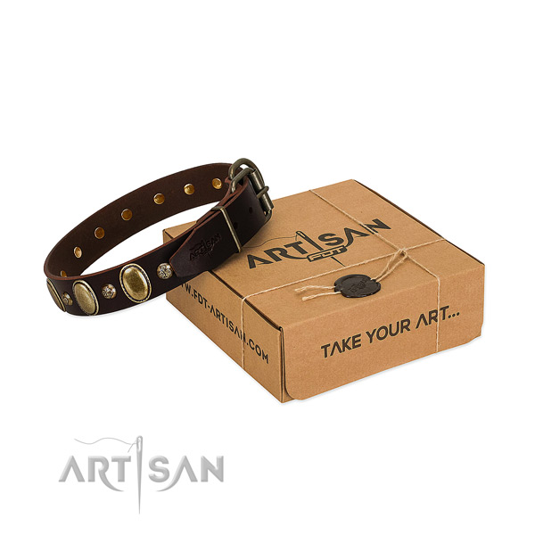 Exquisite full grain leather dog collar with durable fittings