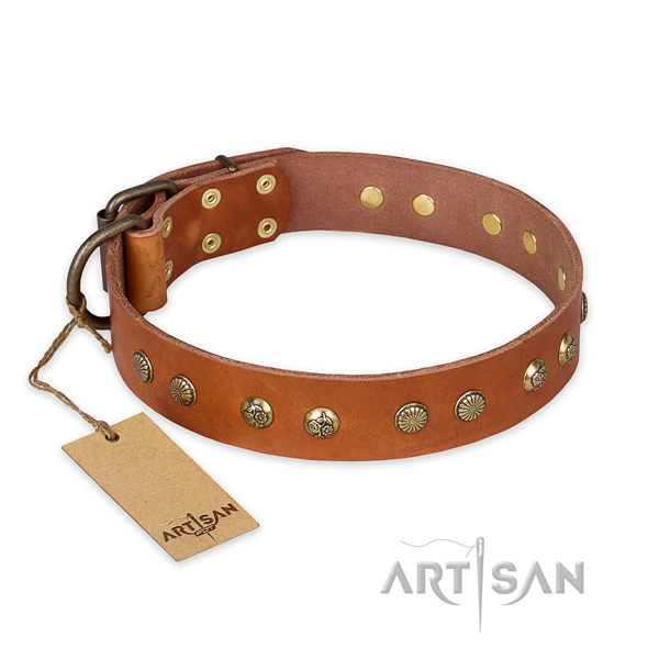 Amazing leather dog collar with corrosion resistant buckle