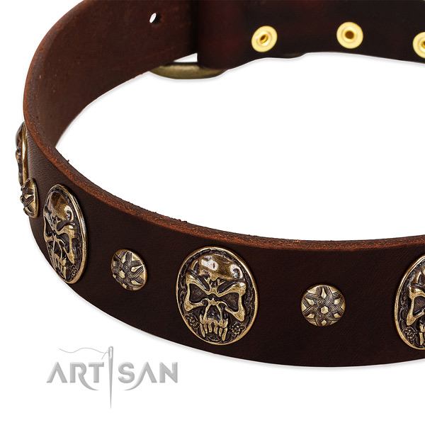 Strong adornments on genuine leather dog collar for your four-legged friend