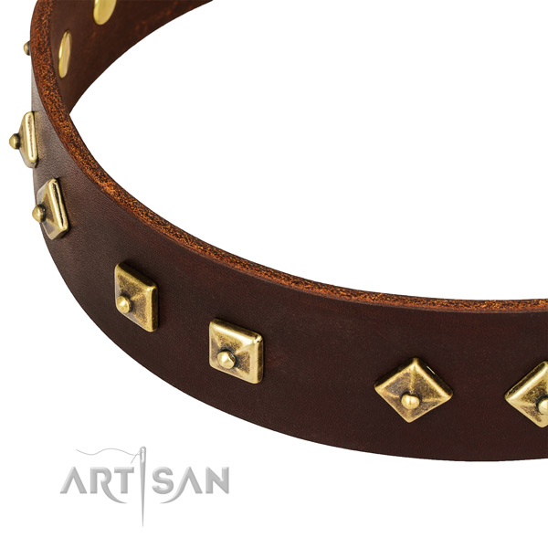 Stunning full grain genuine leather collar for your beautiful pet