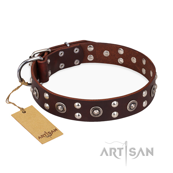 Everyday walking trendy dog collar with reliable traditional buckle