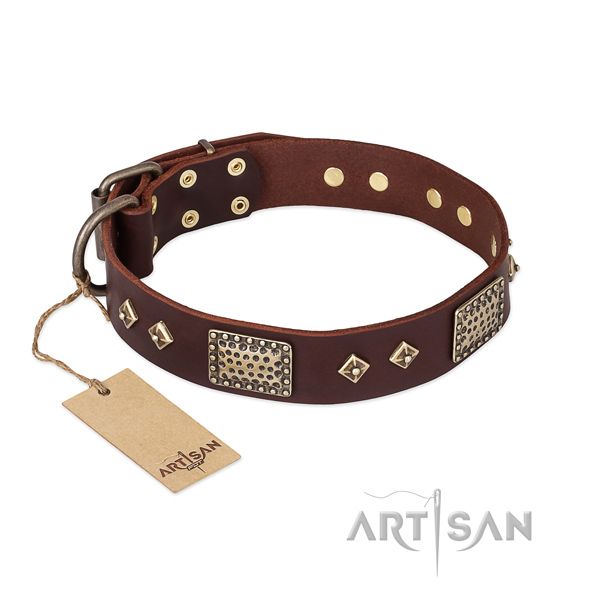 Adjustable genuine leather dog collar for fancy walking
