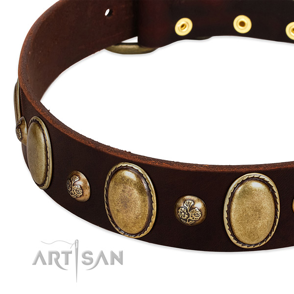 Natural leather dog collar with exceptional embellishments