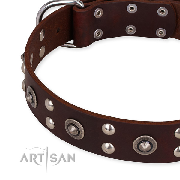 Genuine leather collar with corrosion resistant buckle for your handsome canine