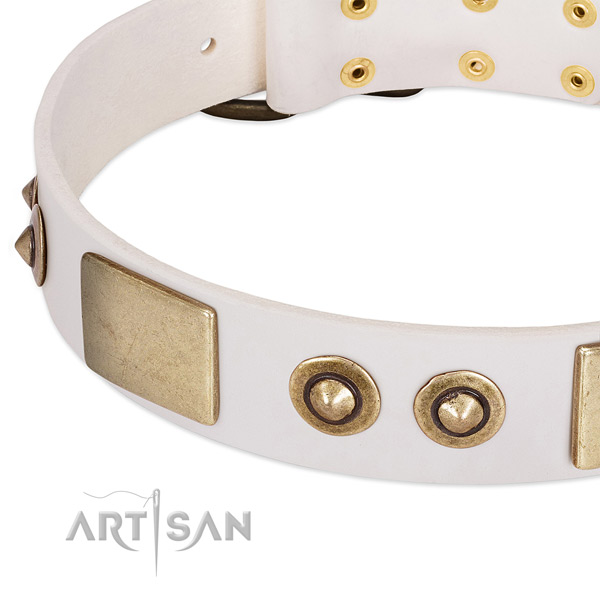 Reliable embellishments on full grain leather dog collar for your doggie