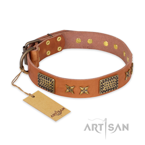 Remarkable leather dog collar with rust resistant traditional buckle