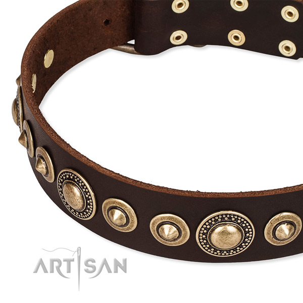 Best quality leather dog collar handcrafted for your impressive dog