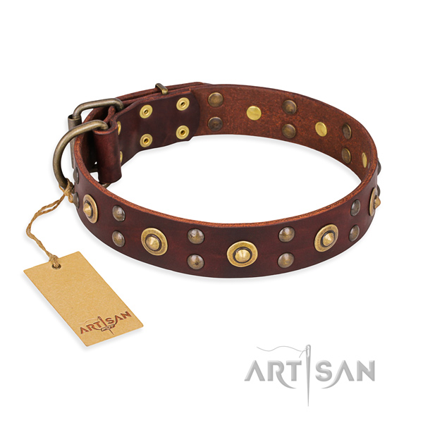 Amazing genuine leather dog collar with durable traditional buckle