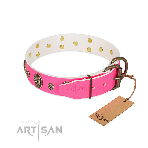 Corrosion resistant traditional buckle on full grain genuine leather collar for walking your dog