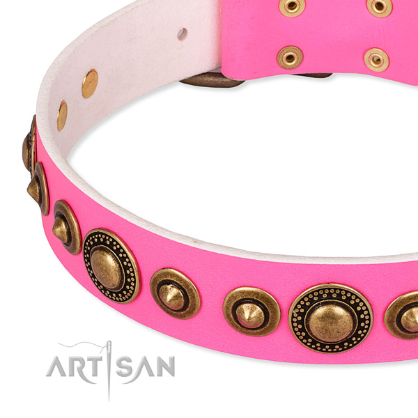 Durable genuine leather dog collar handcrafted for your beautiful pet