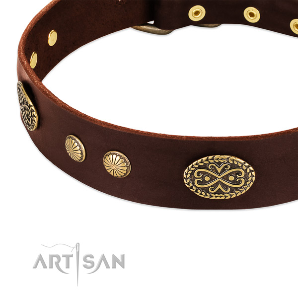 Reliable decorations on full grain natural leather dog collar for your four-legged friend