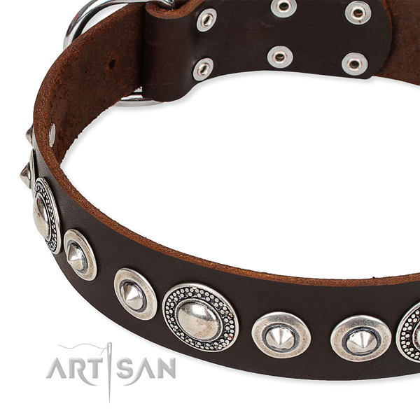 Easy wearing studded dog collar of top notch full grain leather