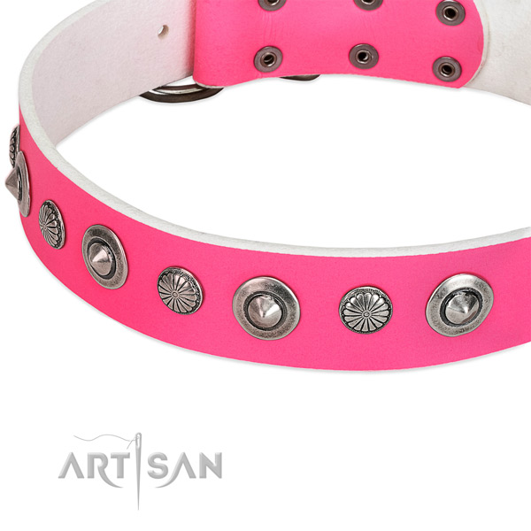 Leather collar with strong fittings for your handsome dog