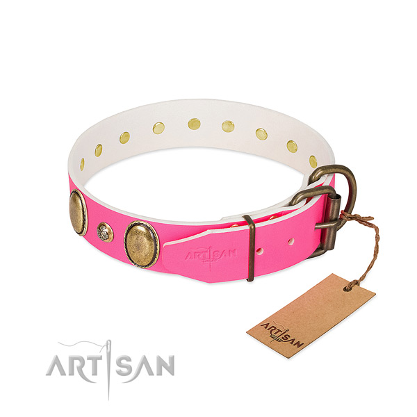 Everyday walking high quality full grain genuine leather dog collar