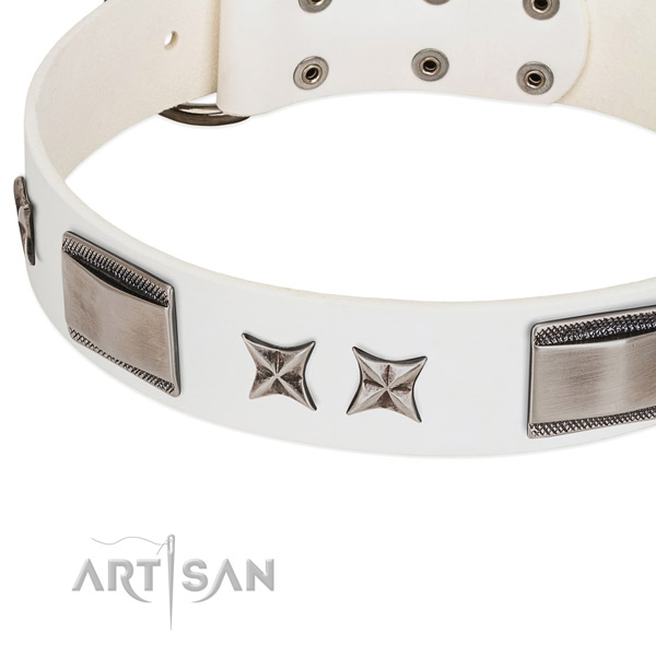 Reliable leather dog collar with rust resistant traditional buckle