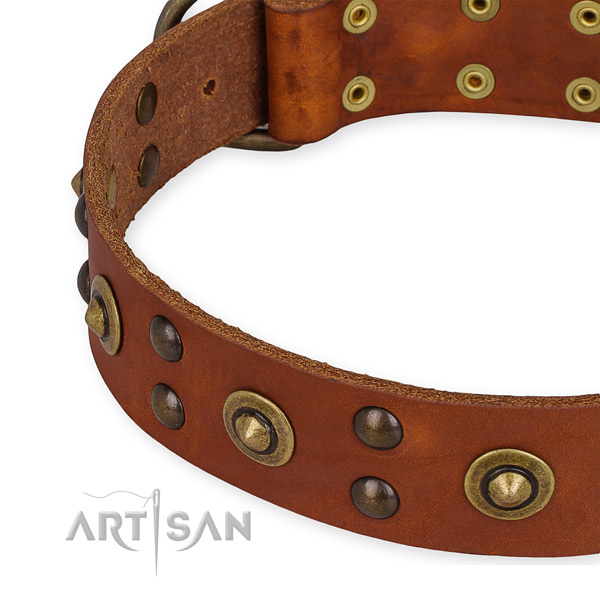 Full grain leather collar with corrosion resistant traditional buckle for your handsome doggie