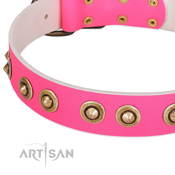 Corrosion resistant embellishments on full grain genuine leather dog collar for your canine