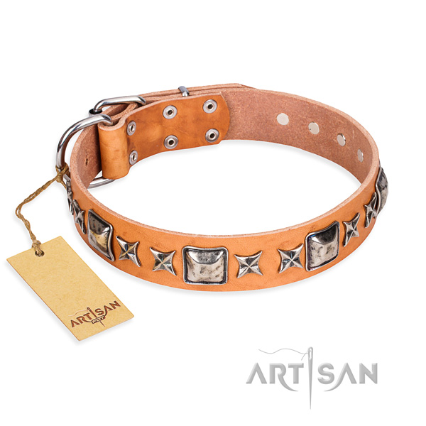 Comfy wearing dog collar of quality leather with embellishments