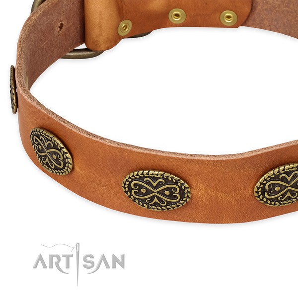 Stylish genuine leather collar for your beautiful canine