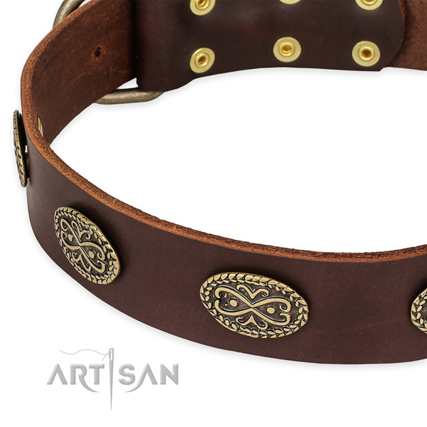 Stunning full grain leather collar for your beautiful doggie