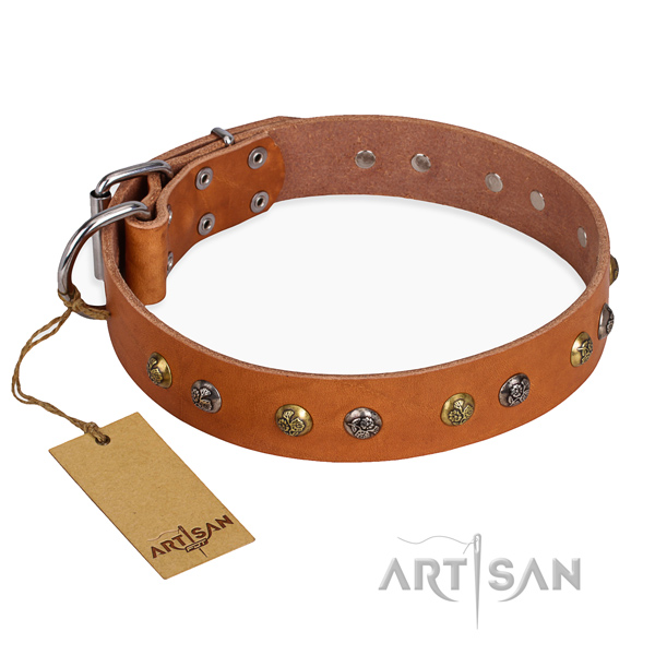 Daily use embellished dog collar with corrosion proof hardware