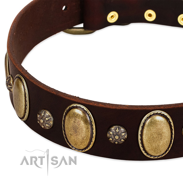 Comfy wearing best quality full grain natural leather dog collar