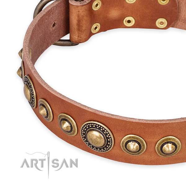 Quality full grain leather dog collar created for your handsome dog