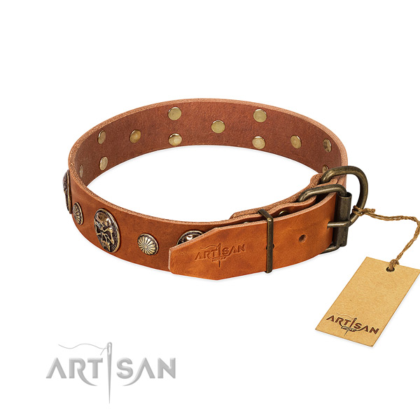 Rust resistant buckle on natural genuine leather collar for basic training your dog
