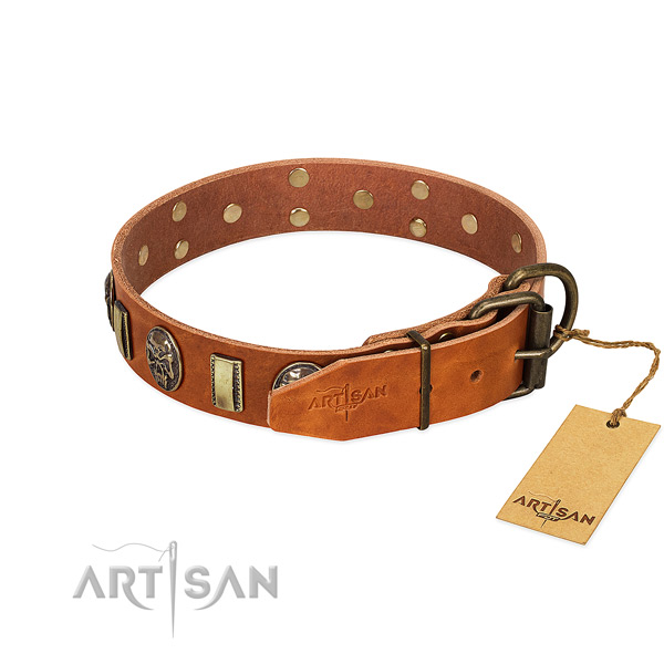 Full grain genuine leather dog collar with durable D-ring and embellishments