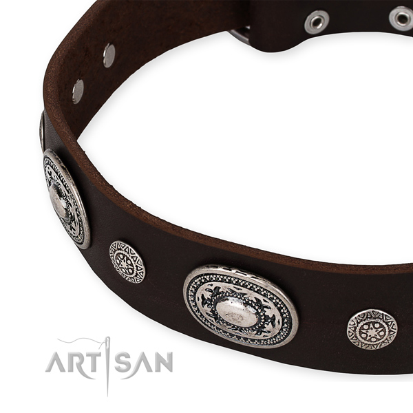 Strong leather dog collar handcrafted for your stylish pet