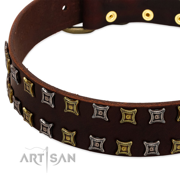 Strong genuine leather dog collar for your impressive dog