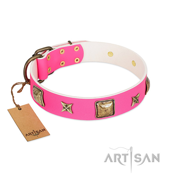 Full grain natural leather dog collar of reliable material with designer embellishments