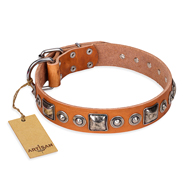 """Era of Future"" FDT Artisan Handcrafted Tan Leather English Bull Terrier Collar with Decorations"