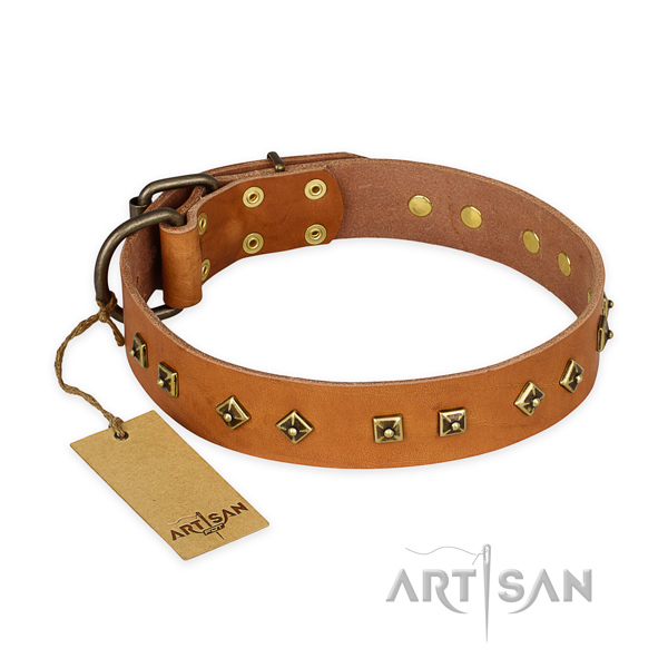 Extraordinary leather dog collar with strong D-ring