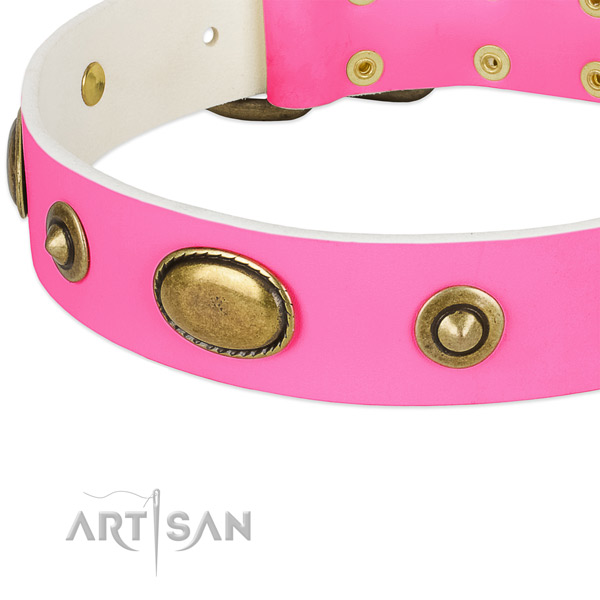 Durable decorations on genuine leather dog collar for your dog