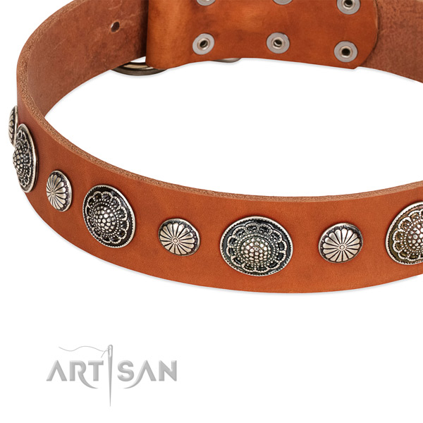 Natural leather collar with rust-proof buckle for your impressive dog
