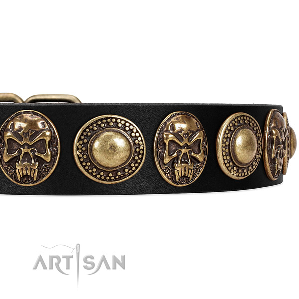 Leather dog collar with embellishments for daily walking