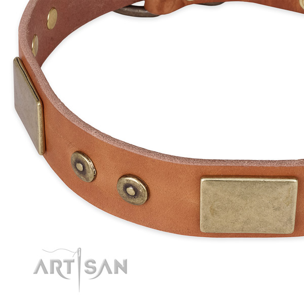 Durable fittings on full grain leather dog collar for your dog