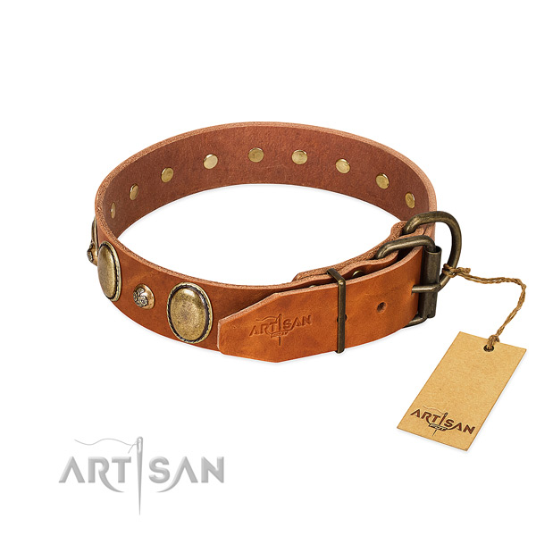 Perfect fit full grain natural leather dog collar with corrosion resistant fittings