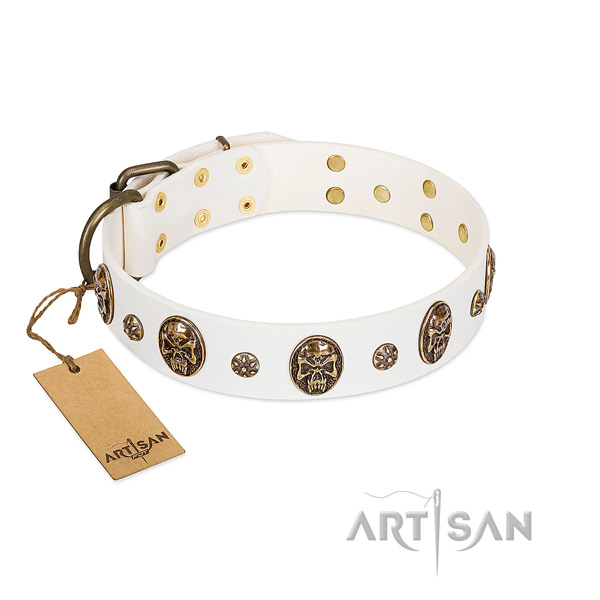 Easy wearing leather collar for your pet