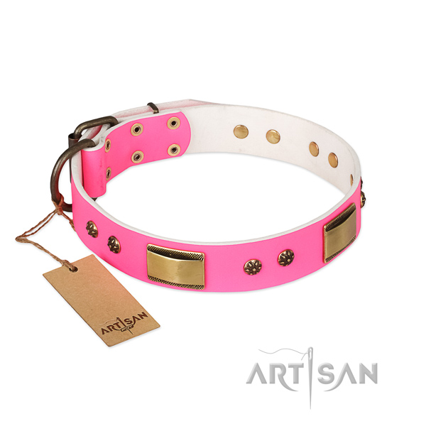 Impressive full grain leather collar for your pet