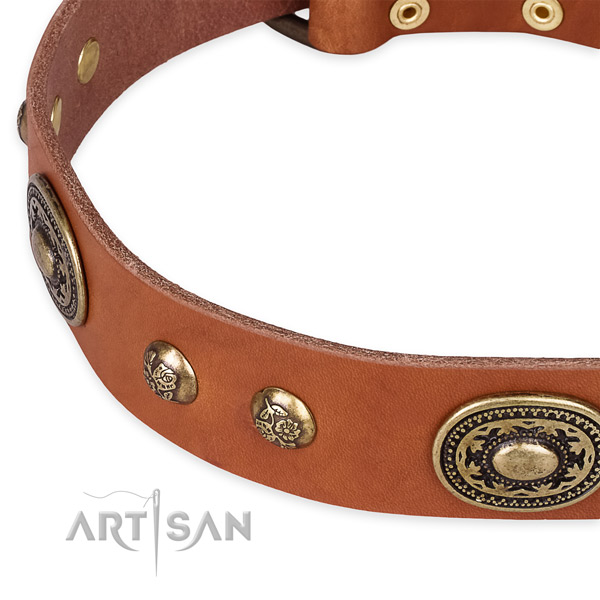Amazing full grain natural leather collar for your impressive doggie