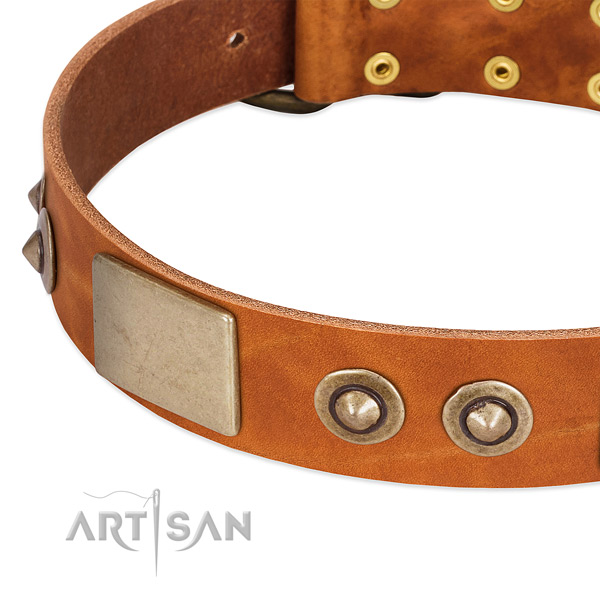 Corrosion proof hardware on genuine leather dog collar for your dog