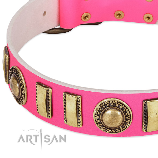 Top notch leather dog collar for your impressive doggie
